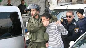 Rapporto: l'occupazione ha arrestato 390 palestinesi ad ottobre, 65 sono bambini