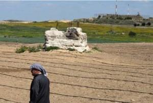 """Storie da Gaza: """"Spero tanto che queste coltivazioni possano dare un raccolto"""""""