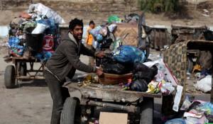 Gaza sotto assedio: asini e non automezzi per la raccolta dei rifiuti