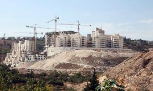 """""""Israele ha annesso 2800 ettari di terra cisgiordana nel corso del 2013"""""""