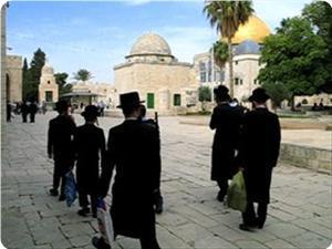 395 coloni israeliani hanno preso d'assalto al-Aqsa la scorsa settimana