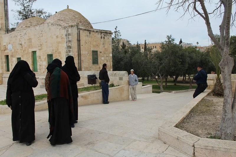 Gang di coloni invadono il plesso di al-Aqsa