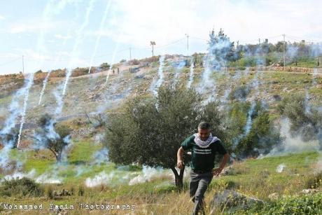 Diversi feriti a Bil'in durante la manifestazione contro il Muro