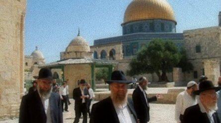 3 donne prelevate dai cortili di al-Aqsa
