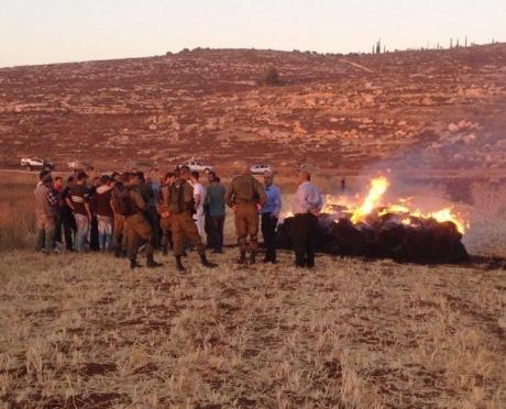 Estremisti israeliani bruciano le messi palestinesi a Turmus Ayya