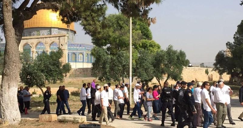 Orda di coloni estremisti invade il complesso di al-Aqsa