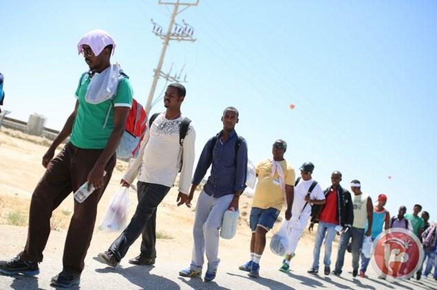 Forze egiziane detengono 143 immigrati al valico tra Egitto e Libia