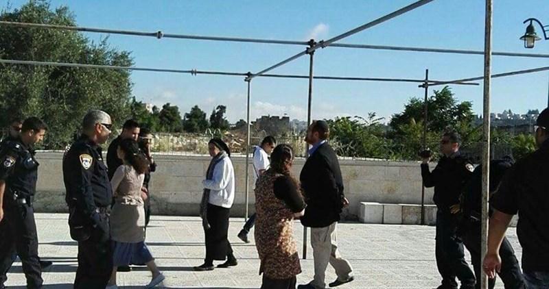 Coloni israeliani guidati da Glick sfilano nei cortili di al-Aqsa