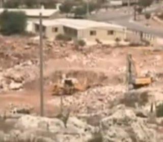 Coloni israeliani sradicano terra palestinese per espandere insediamenti