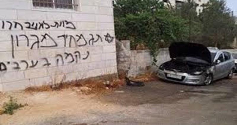 Coloni compiono atti di vandalismo a Yafa
