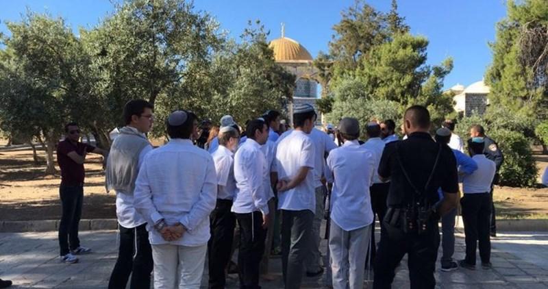 Gerusalemme, 55 coloni israeliani invadono i cortili di al-Aqsa