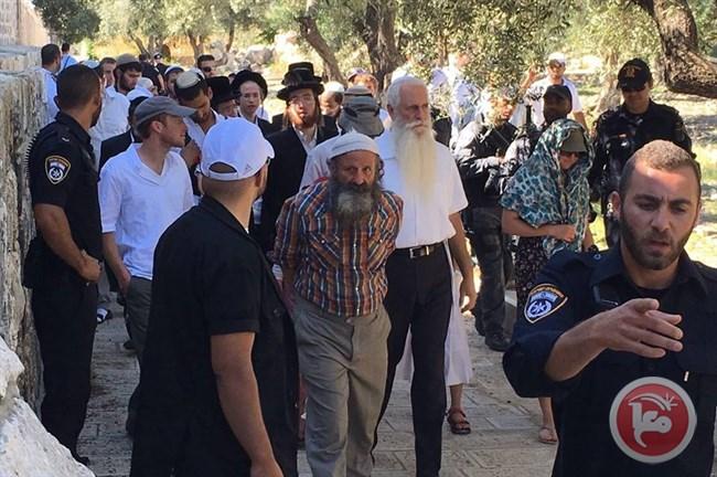Domenica, 4 Palestinesi arrestati, 2 Israeliani estremisti evacuati da al-Aqsa