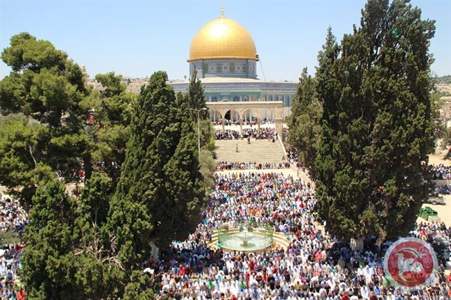 Estremisti israeliani invadono al-Aqsa