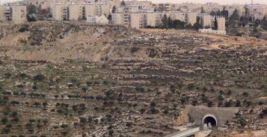 Israele costruirà altre 700 unità abitative coloniali a Gerusalemme