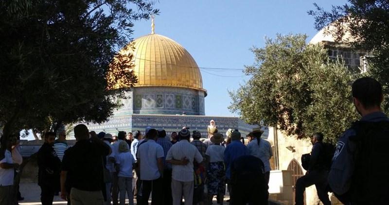 Coloni israeliani invadono al-Aqsa. Aggressioni in aumento nel prossimo futuro