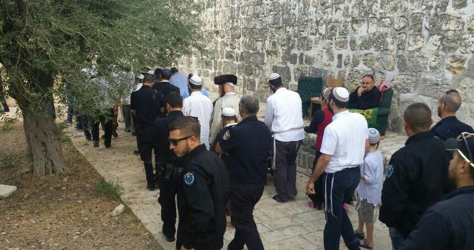 Decine di coloni entrano a al-Aqsa scortati dalla polizia israeliana