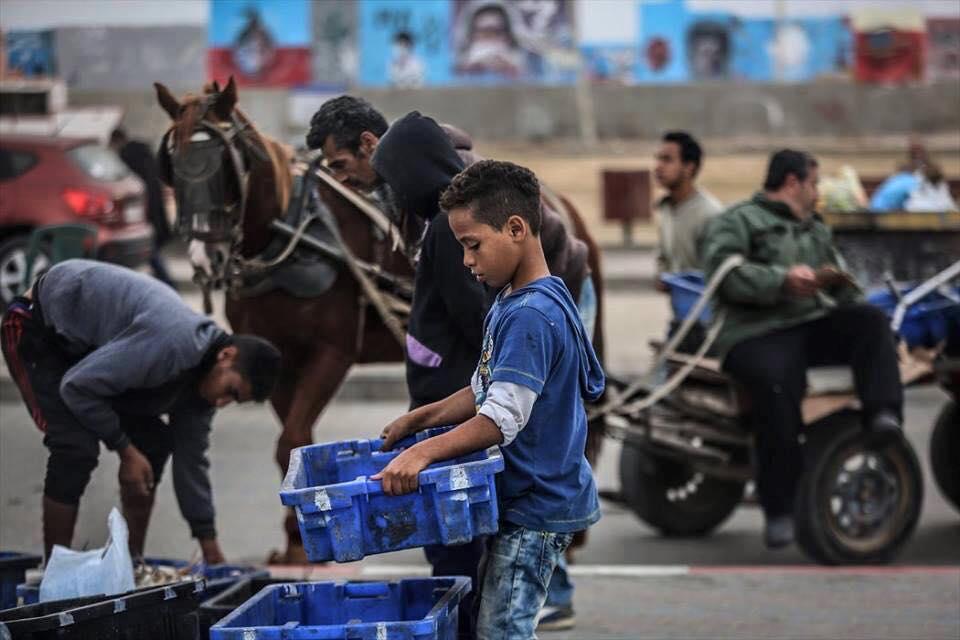 Bambini di Gaza costretti a lavorare a causa dell'assedio