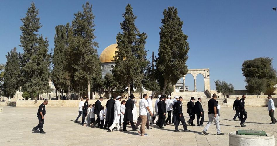 Coloni invadono i cortili di al-Aqsa