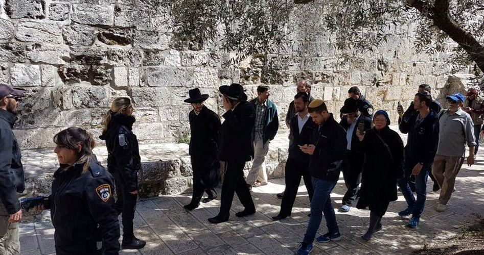 98 coloni invadono i cortili di al-Aqsa