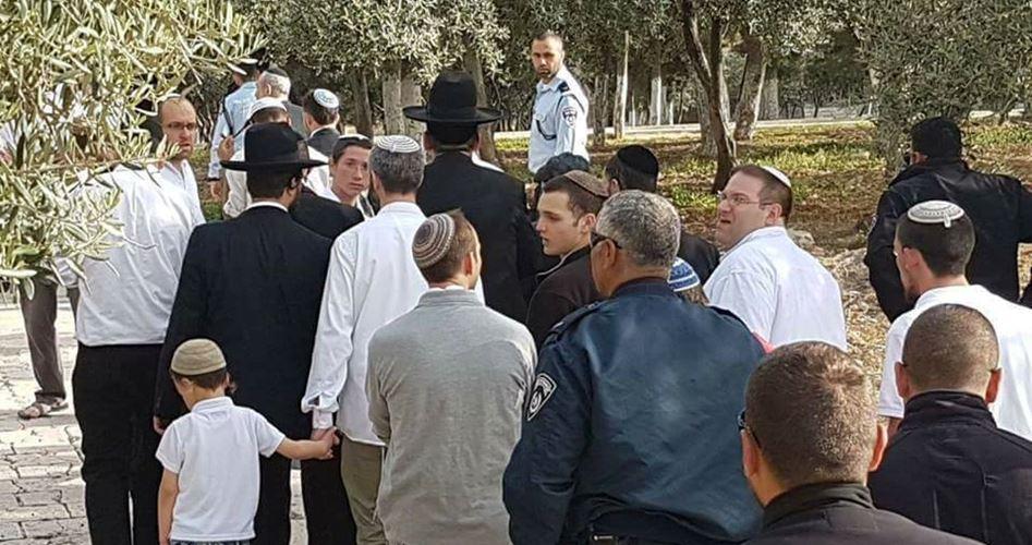 250 israeliani invadono il complesso di al-Aqsa