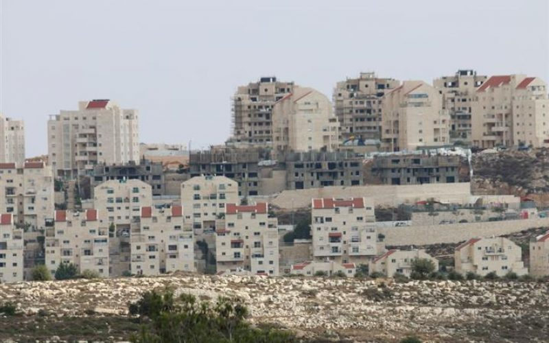 Gerusalemme, 200 nuove unità coloniali in insediamento israeliano