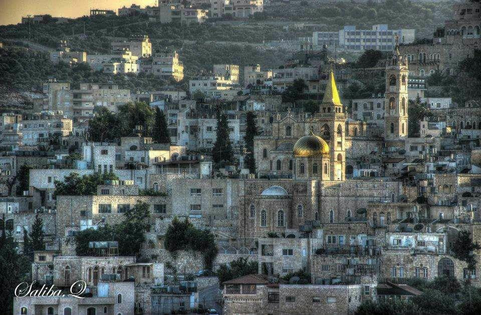 """Beit Jala, il """"tappeto verde"""""""