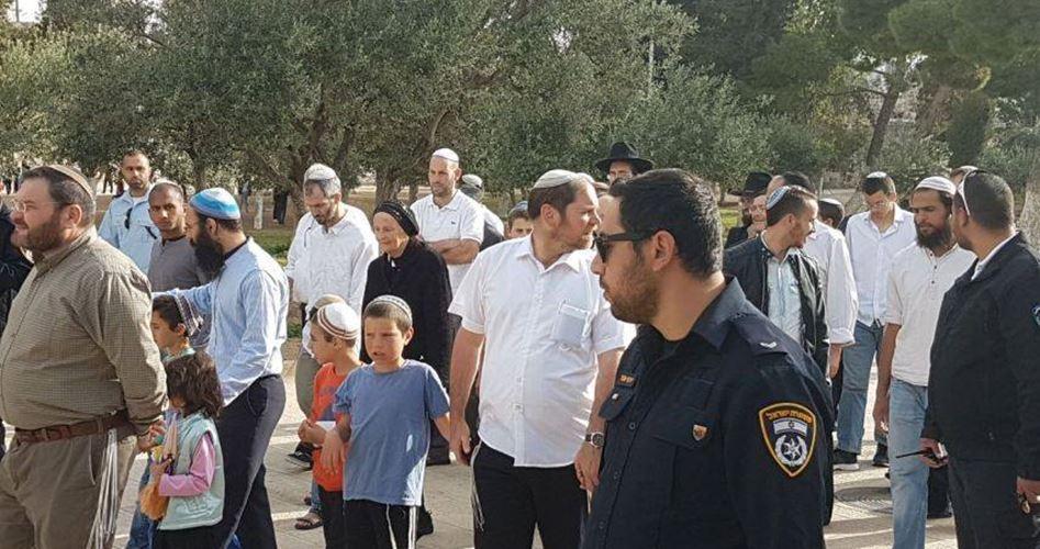 2.461 coloni hanno invaso la moschea al-Aqsa ad aprile