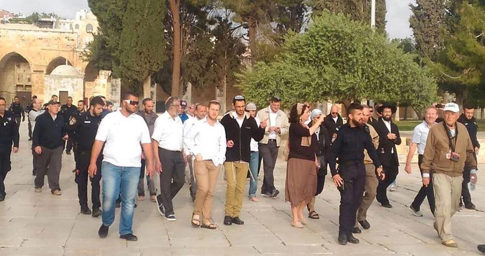 131 coloni israeliani invadono il complesso di al-Aqsa