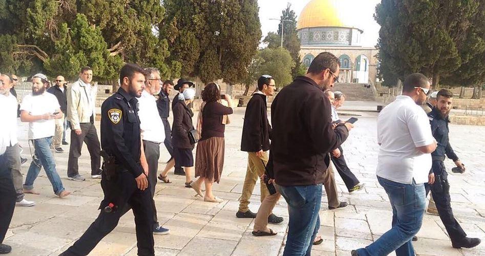 Decine di coloni sfilano a al-Aqsa