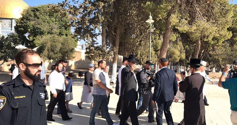 Decine di coloni irrompono a al-Aqsa