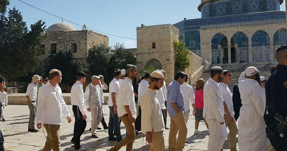 98 coloni israeliani sfilano nei cortili di al-Aqsa