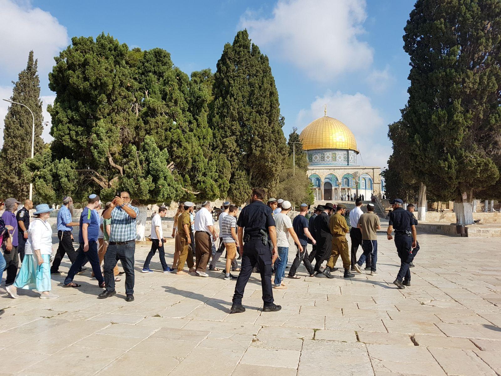 Gerusalemme, dall'inizio di settembre, 2079 coloni sono entrati a al-Aqsa