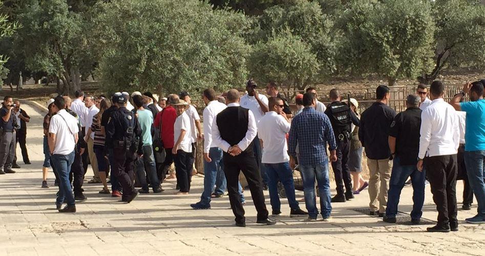 Gerusalemme, 102 Israeliani hanno invaso al-Aqsa