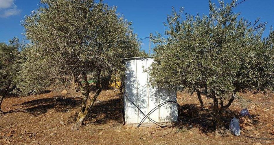Anziana palestinese aggredita da coloni a Nablus