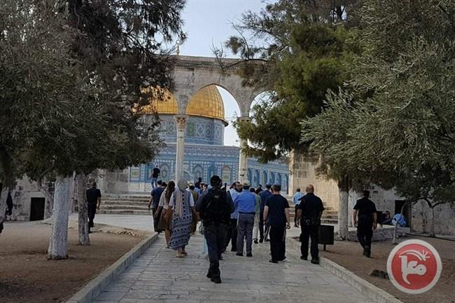 Gruppo di estremisti israeliani entra a al-Aqsa