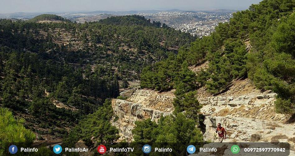 Wadi al-Qad: una riserva naturale risalente all'epoca ottomana