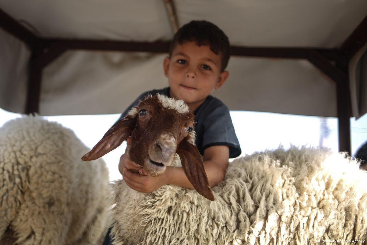 Israele ha ucciso 14 bambini palestinesi nel 2017