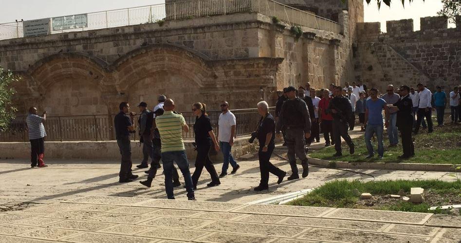 Gerusalemme, 56 coloni israeliani hanno invaso al-Aqsa
