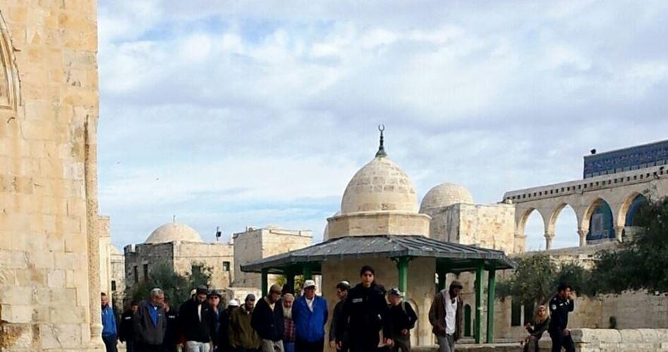 Oltre 100 coloni hanno invaso al-Aqsa