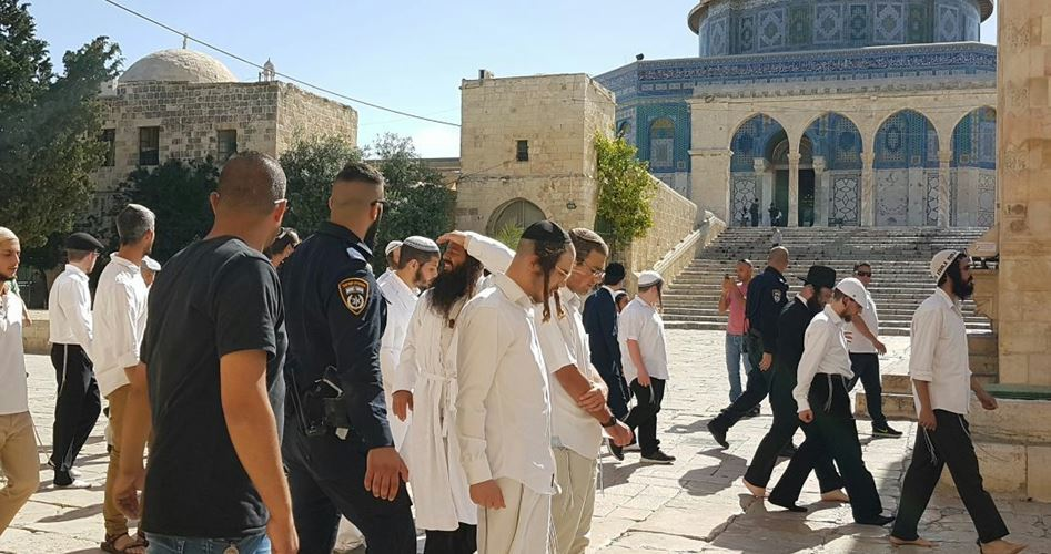 Orde di coloni invadono i cortili di al-Aqsa