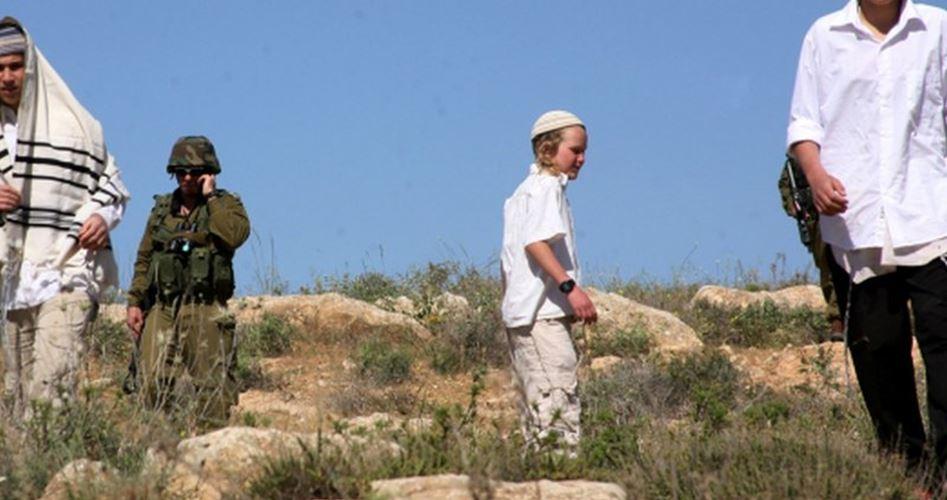Yesh Din: 15 attacchi di coloni in 3 giorni