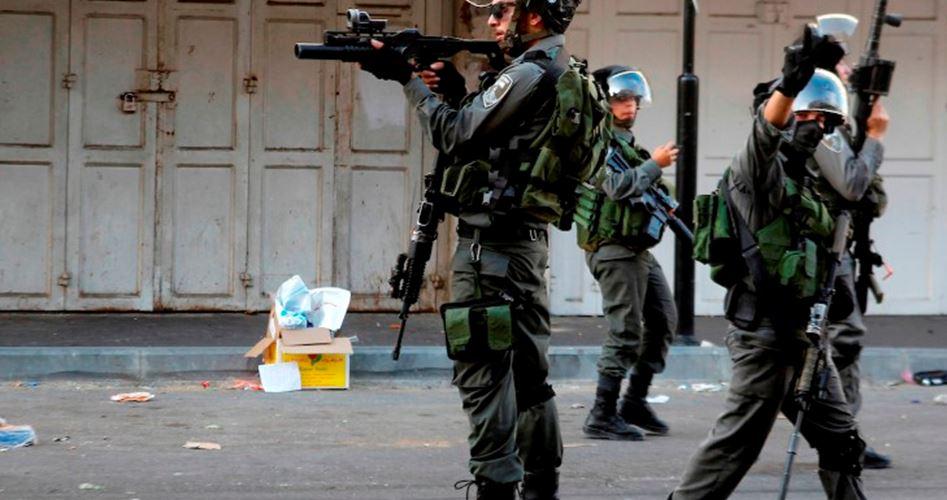 A dicembre, 2096 aggressioni israeliane in Cisgiordania