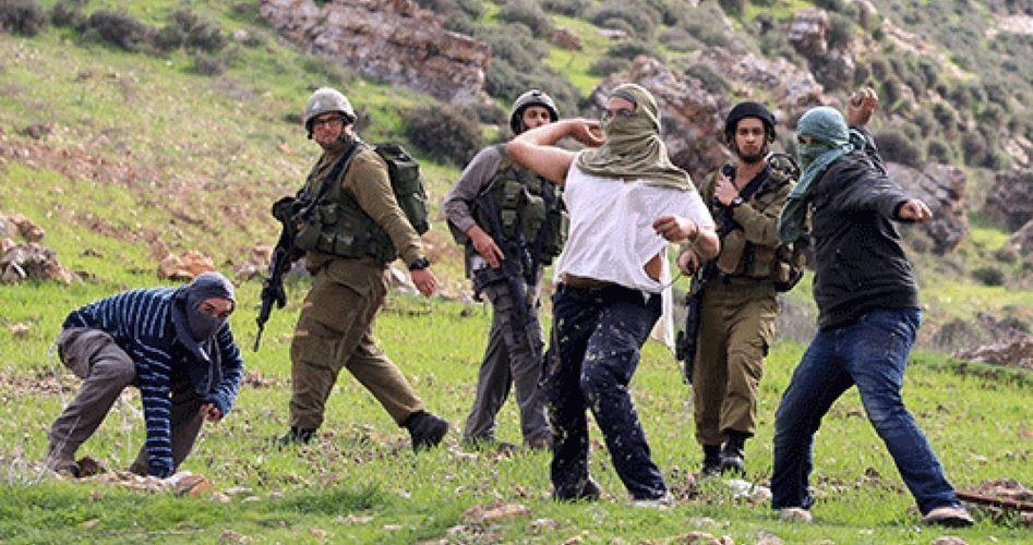 Orda di coloni aggredisce Palestinese a Hebron