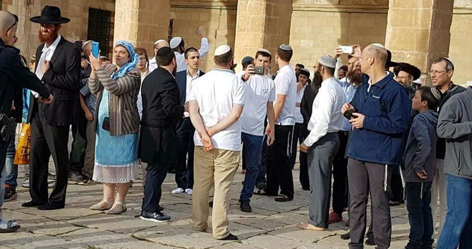Oltre 100 coloni invadono al-Aqsa