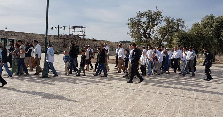 59 coloni ebrei invadono i cortili di al-Aqsa