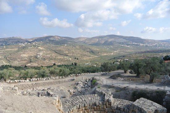 Invasione di coloni e forze di occupazione nel sito archeologico di Sebastia