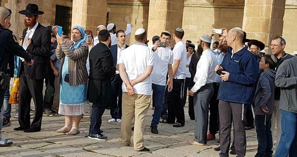 Gerusalemme, 100 coloni sfilano a al-Aqsa
