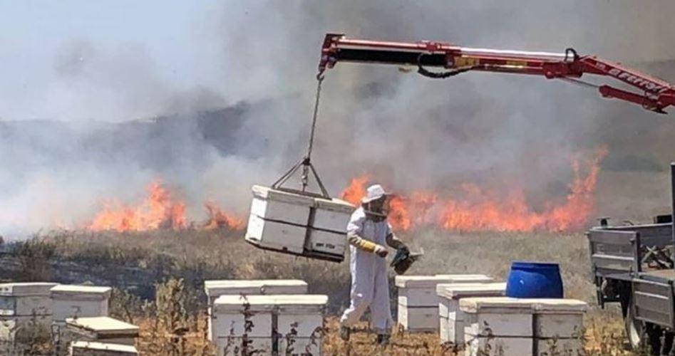Striscia di Gaza, aquiloni e palloncini palestinesi causano 26 incendi in aree israeliane