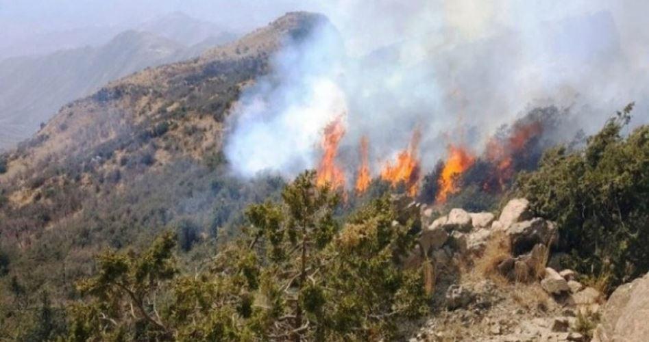 Incendi a Eshkol scatenati da palloncini infuocati