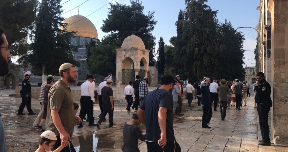 95 coloni fanno irruzione ad al-Aqsa